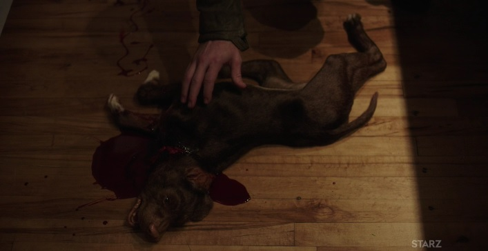 Tommy and his dead dog Power Season 3